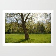 sefton park part 1 Art Print