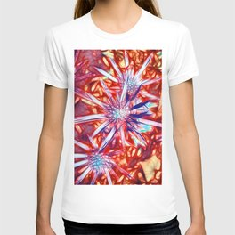 Star Bright in Red T-shirt