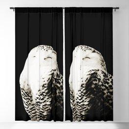 Snow Owl #1 #animal #decor #art #society6 Blackout Curtain