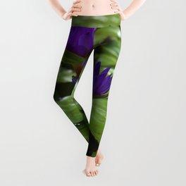 Nymphaea Leggings