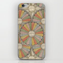 Math Genius iPhone Skin