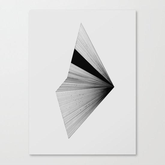 Half 2 Canvas Print
