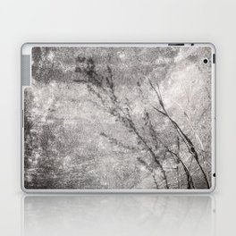 Black and White Grass Shadows on Stone Laptop & iPad Skin