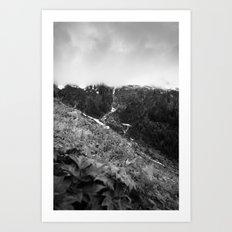 Alpine Waterfall in Black and White Art Print