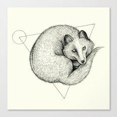 'Wildlife Analysis V' Canvas Print