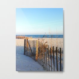Beach Path Metal Print