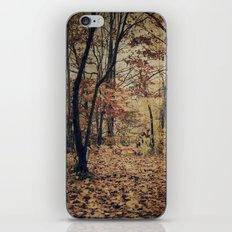 Vintage Autumn iPhone & iPod Skin