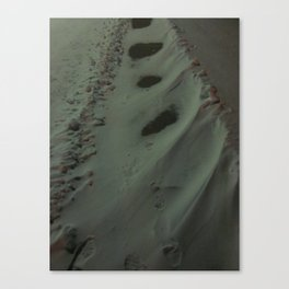 Place Snow In My Path Canvas Print