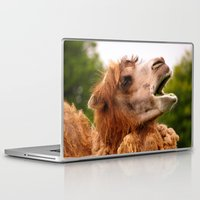 camel Laptop & iPad Skins featuring Camel by GardenGnomePhotography