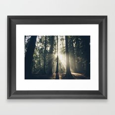 Sun Beam Framed Art Print