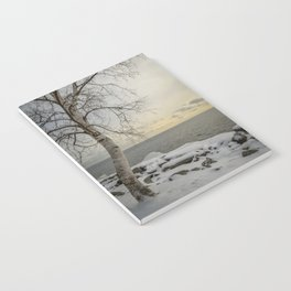 Curves of the Silver Birch by Teresa Thompson Notebook