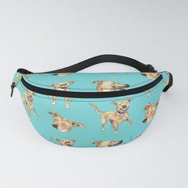 Aqua Dog Fanny Pack