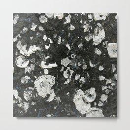 Barnacle Remains Metal Print