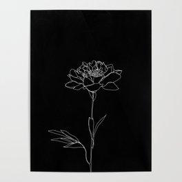 Rose line drawing - Lorna Black Poster