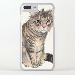 Messy Cat Clear iPhone Case