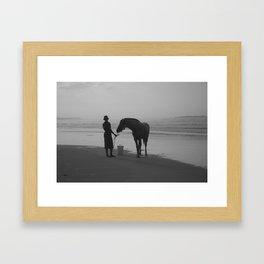 The Horse on the Beach Framed Art Print