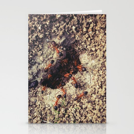 Ants Stationery Cards
