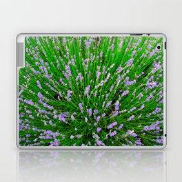 Lavender Close Up Laptop & iPad Skin