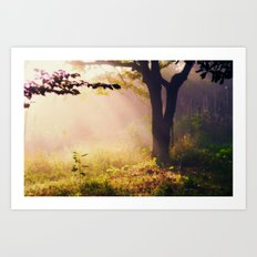 Golden Morning Art Print