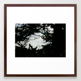 Dream Trees Framed Art Print