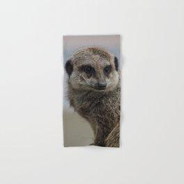 Meerkat Hand & Bath Towel