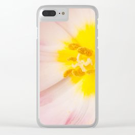 Yellow stamen of pink tulip Clear iPhone Case