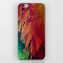 colours of autumn iPhone Skin