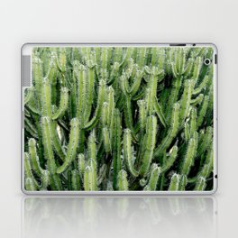 Green Cactus Cacti Plant Laptop & iPad Skin