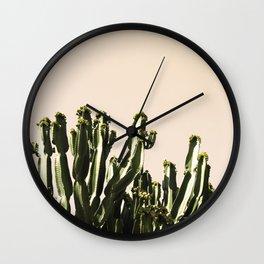 cactus nature x Wall Clock