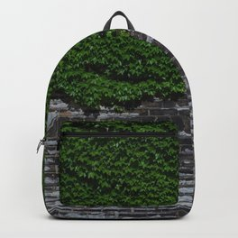 The Gateway Backpack