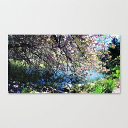 Walk Along the Cherry Blossoms Canvas Print