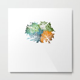 Four Seasons In One Day Metal Print