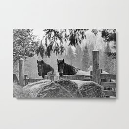 horses in the snow Metal Print