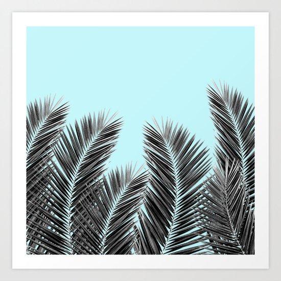 Clear Palm Skies Art Print