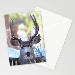 Watercolor Deer, Mule 13, RMNP, Colorado, Buuuuurp Stationery Cards