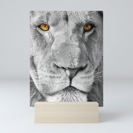 Lion Male Portrait CK Mini Art Print