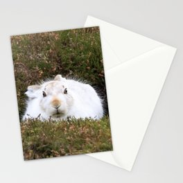 Mountain Hare (Lepus timidus) Stationery Cards
