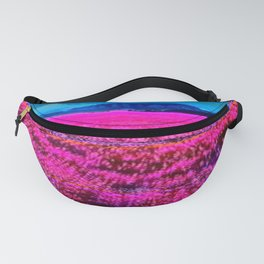 X3788-00000 (2014) Fanny Pack