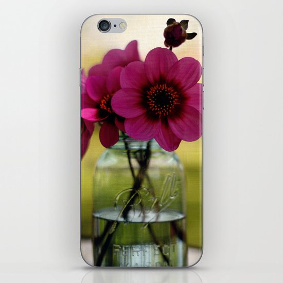 Dahlias In A Blue Jar iPhone & iPod Skin