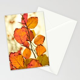 Leave me alone! Stationery Cards