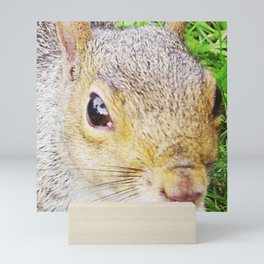The many faces of Squirrel 5 Mini Art Print