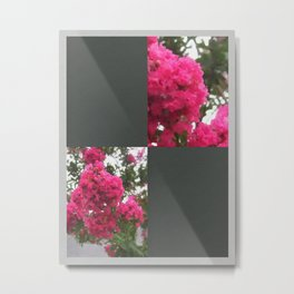 Crape Myrtle Blank Q6F0 Metal Print
