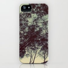 String theory iPhone (5, 5s) Slim Case