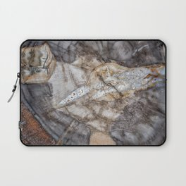 Petrified wood 3266 Laptop Sleeve