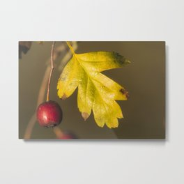 Red and yellow #2 Metal Print
