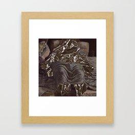 013 Framed Art Print