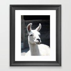 Llama Tell Ya... Framed Art Print
