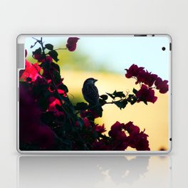 House Sparrow in the Evening Light Laptop & iPad Skin