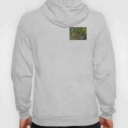 Wildflower Meadow Hoody