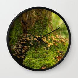 Mushroom Colony In The Forest... Wall Clock